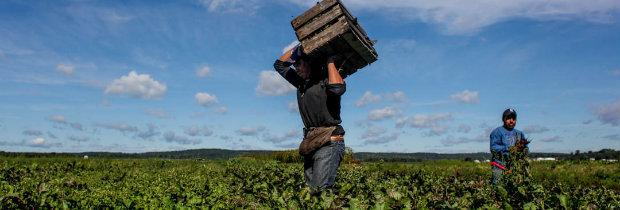 Promocionan en Mexico visa laboral para USA
