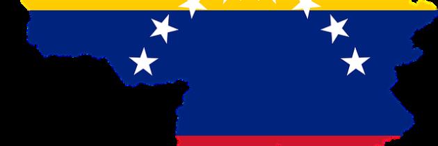 Entre la crisis y la desesperanza: radiografía de la diáspora venezolana