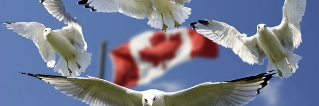 Ahora la residencia permanente en Canadá es más fácil