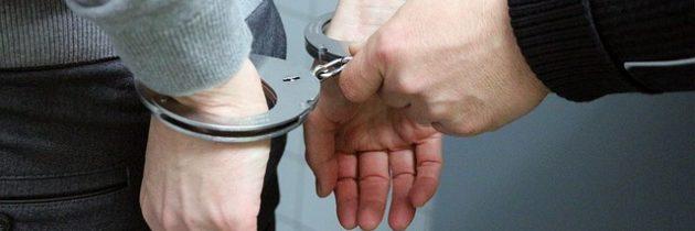 La inmigración y los índices criminales