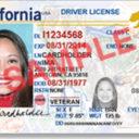 ¿Cuántos indocumentados tienen licencia de conducir en California?